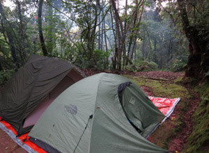 Camping in Nyungwe Forest