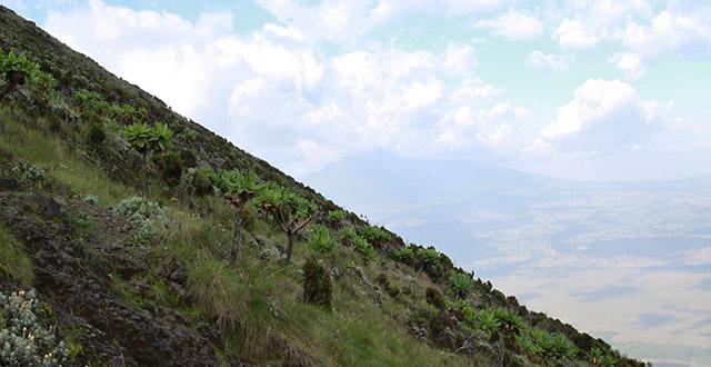 Hiking Mount Nyiragongo